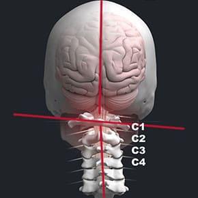 Blair Chiropractic Technique